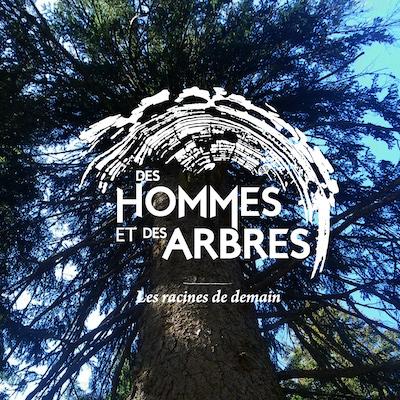 Group-La_diversit_des_arbres_Artboard_1.jpg
