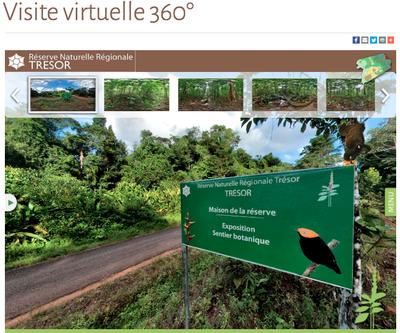 Réserve Naturelle Régionale Trésor (Guyane française)