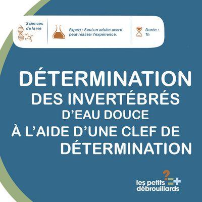 D_termination_des_invertb_res_d_eau_douce_Sans_nom_1.jpg