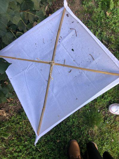 Parapluie_japonais.jpeg