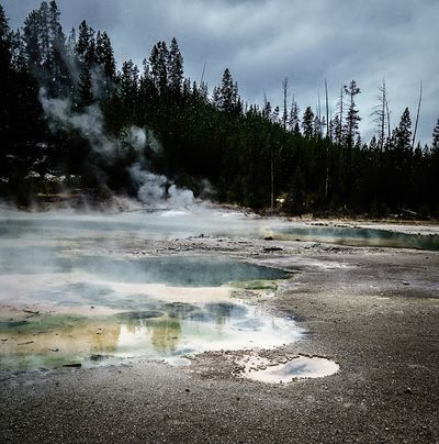 Group-Volcanisme Norris Geyser Basin Porcelain Basin Yellowstone.jpg