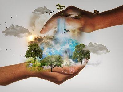 Biodiversité: de quoi parle-t-on