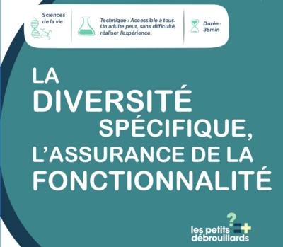 La_diversit__sp_cifique__l_assurance_de_la_fonctionnalit__Sans_titre.png