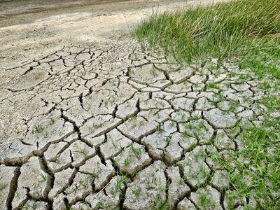 D_fi_-_lutter_contre_la_s_cheresse_climate-change-2241061_1920.jpg